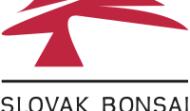 Slovenská bonsajová asociácia