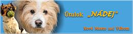"""ÚTULOK """"NÁDEJ"""" pre opustených a týraných psíkov"""